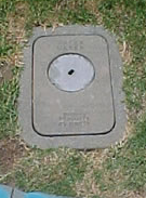 A water meter located in a grassy area
